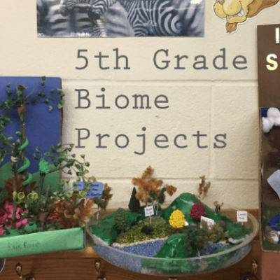 5th Grade Biome Projects